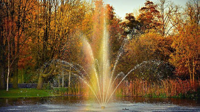 bilden föreställer Vondelpark Amsterdam